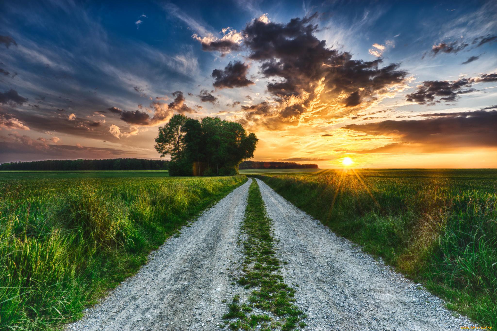 картинка с природой и дорог долго думала, зачем